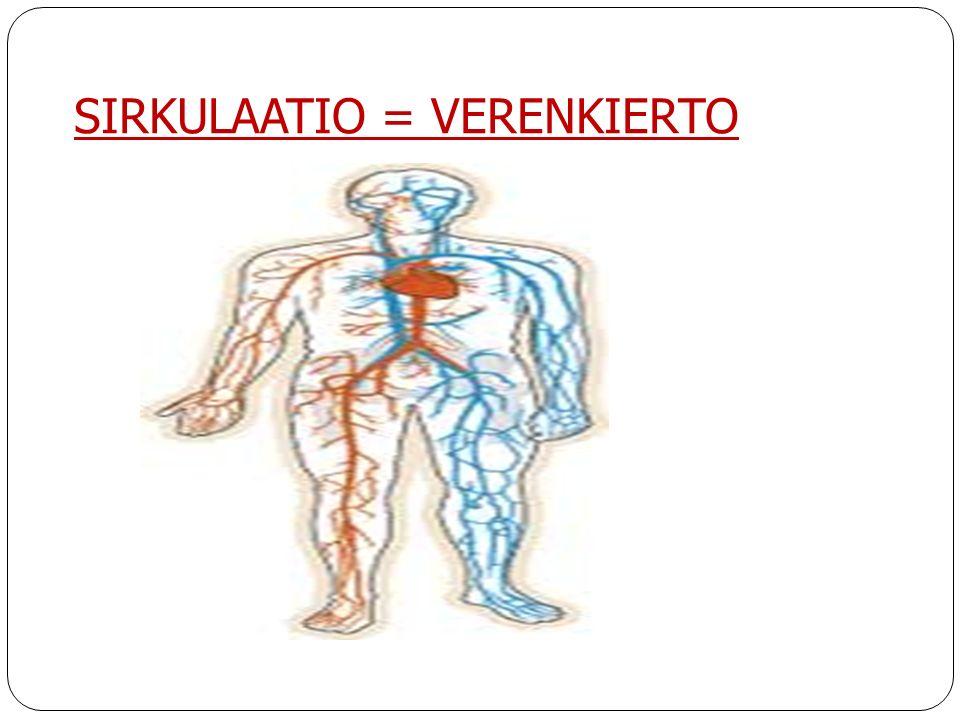 SIRKULAATIO = VERENKIERTO