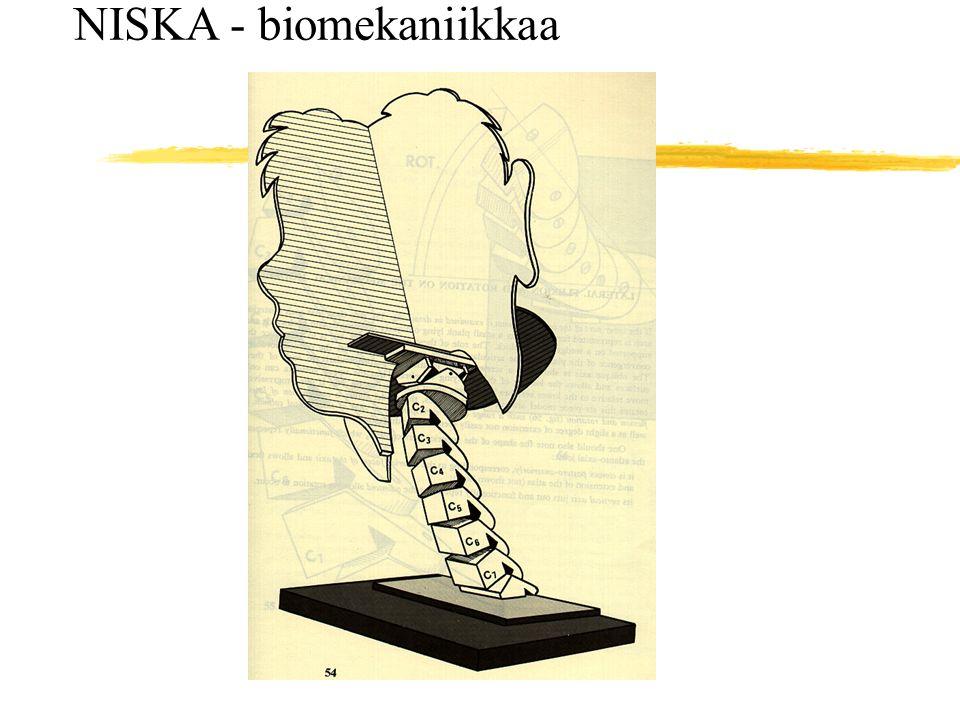 NISKA - biomekaniikkaa