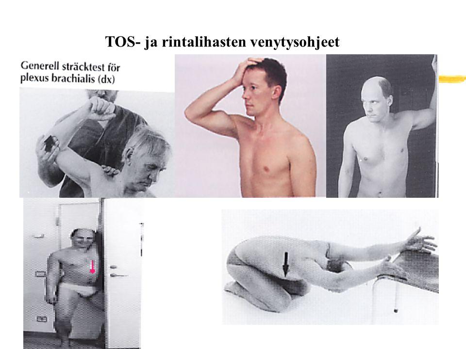 TOS- ja rintalihasten venytysohjeet