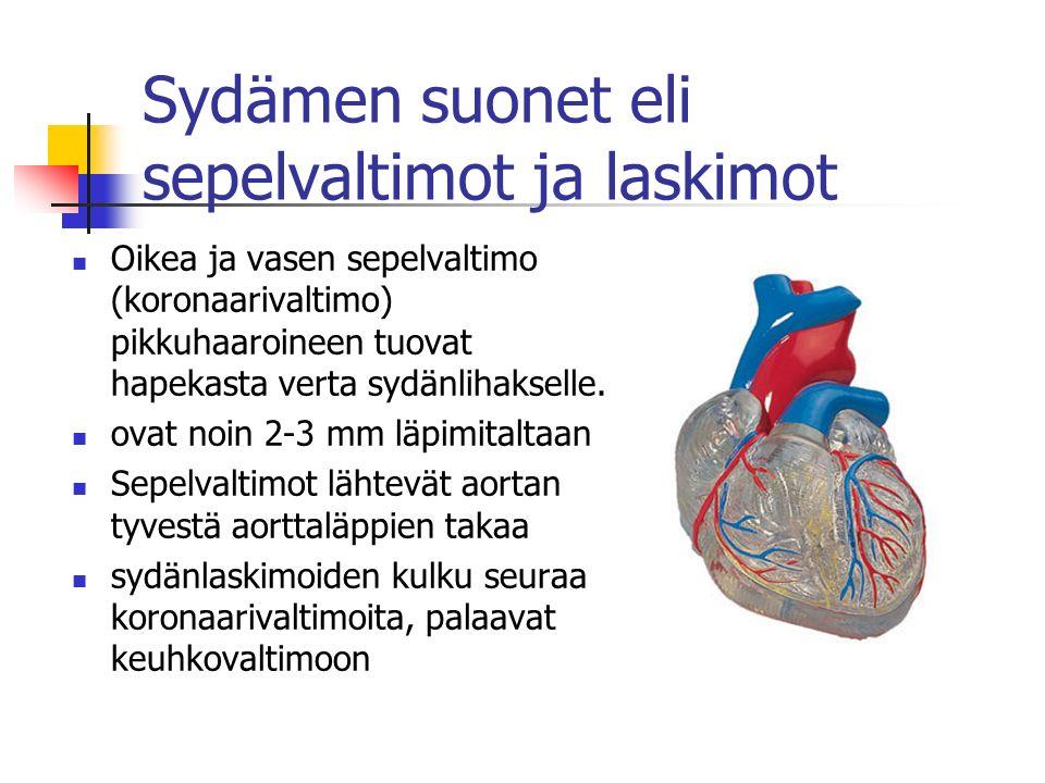 Sydämen suonet eli sepelvaltimot ja laskimot