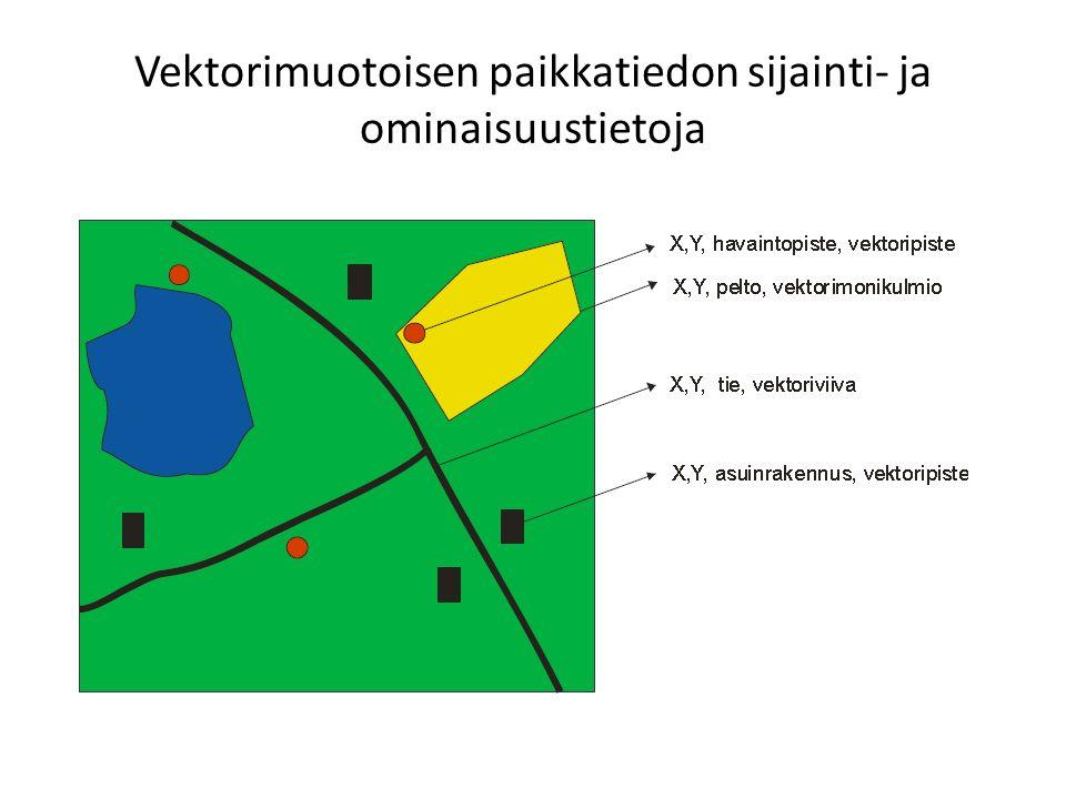 Vektorimuotoisen paikkatiedon sijainti- ja ominaisuustietoja