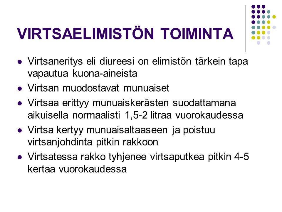 VIRTSAELIMISTÖN TOIMINTA