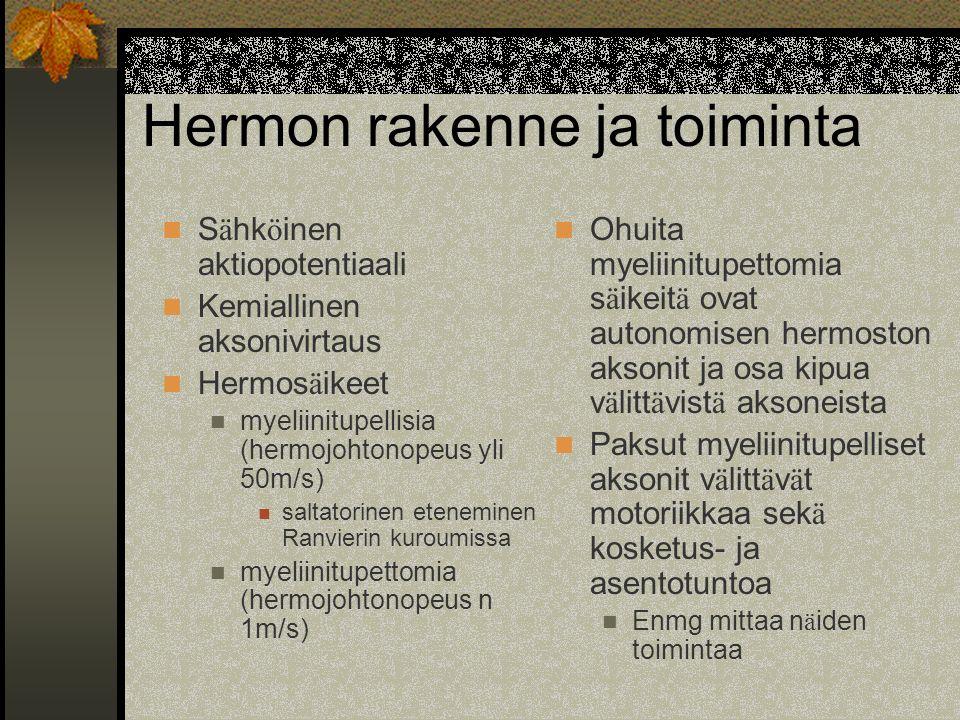 Hermon rakenne ja toiminta
