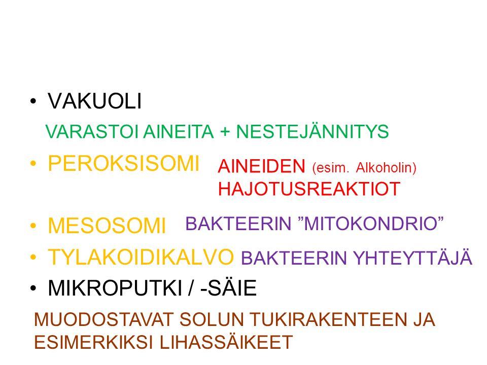 VAKUOLI PEROKSISOMI MESOSOMI TYLAKOIDIKALVO MIKROPUTKI / -SÄIE