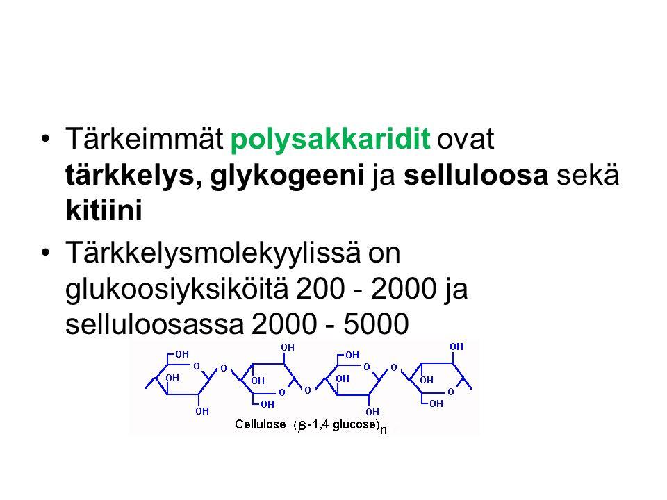Tärkeimmät polysakkaridit ovat tärkkelys, glykogeeni ja selluloosa sekä kitiini