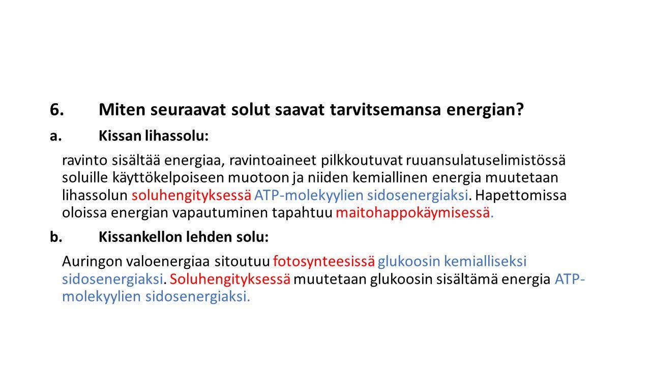 6. Miten seuraavat solut saavat tarvitsemansa energian
