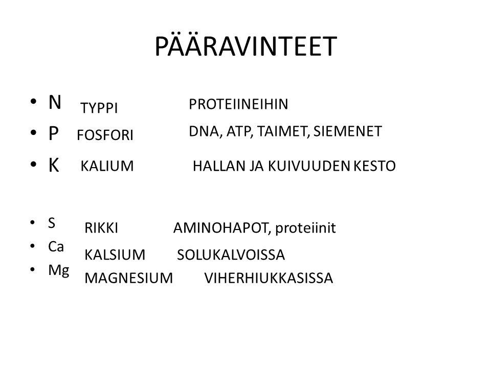 PÄÄRAVINTEET N P K S Ca Mg PROTEIINEIHIN TYPPI