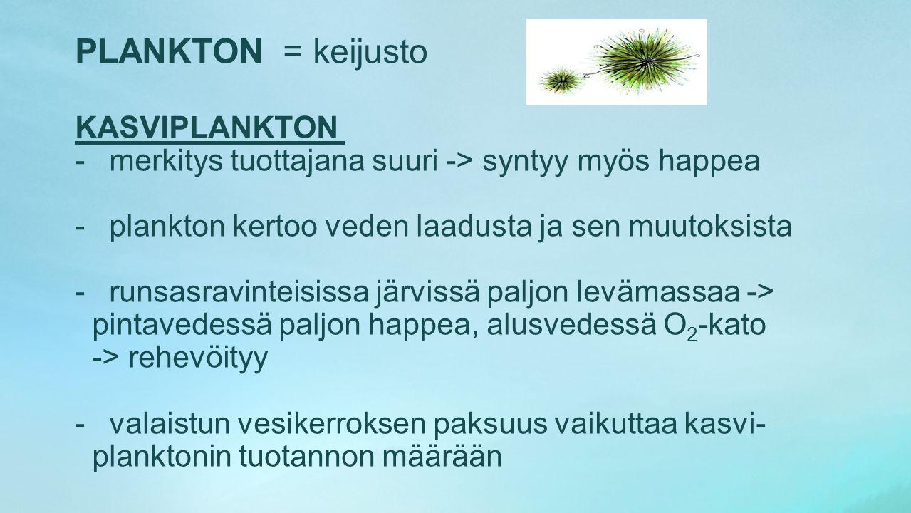 PLANKTON = keijusto KASVIPLANKTON