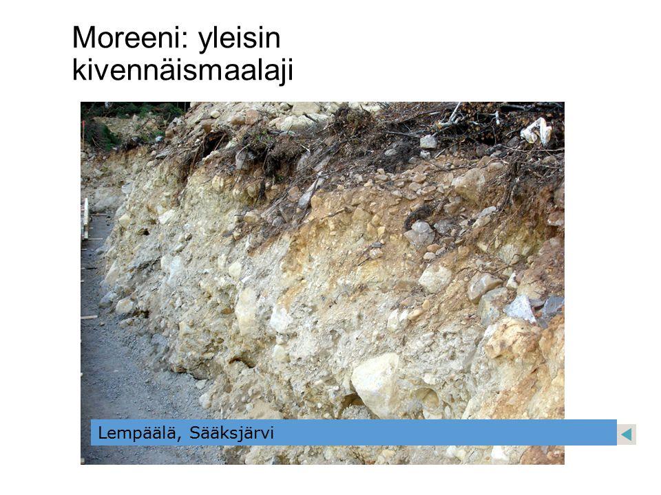 Moreeni: yleisin kivennäismaalaji