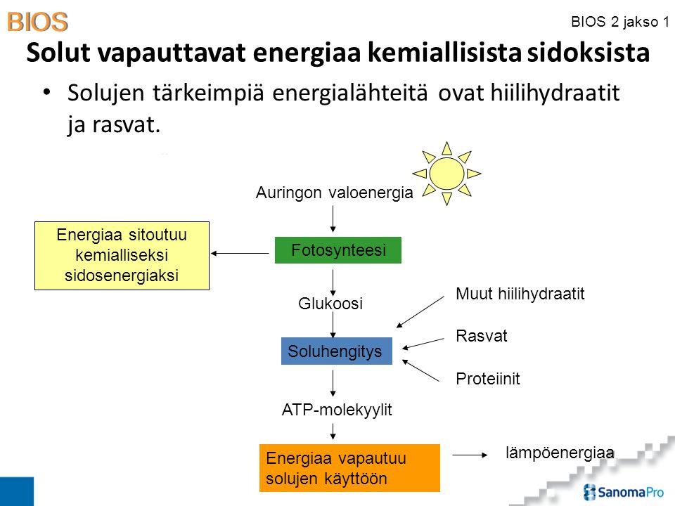 Solut vapauttavat energiaa kemiallisista sidoksista