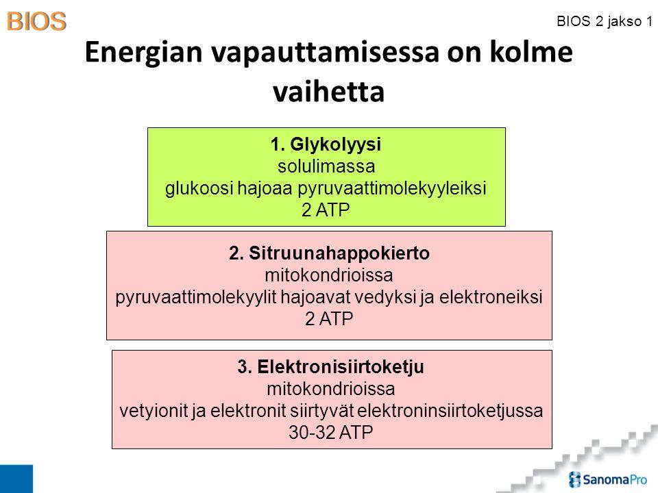 Energian vapauttamisessa on kolme vaihetta