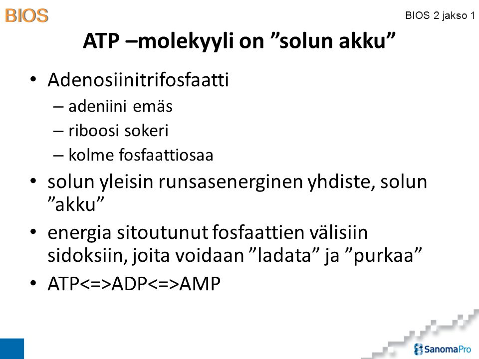 ATP –molekyyli on solun akku