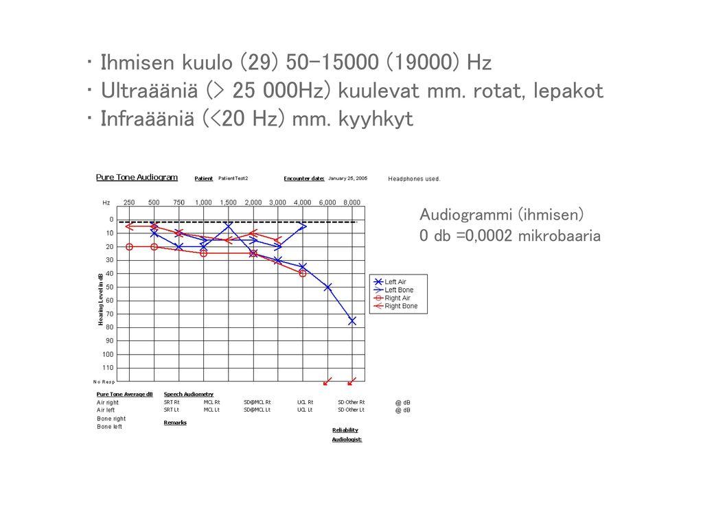 Ultraääniä (> 25 000Hz) kuulevat mm. rotat, lepakot