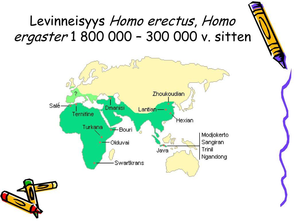 Levinneisyys Homo erectus, Homo ergaster 1 800 000 – 300 000 v. sitten
