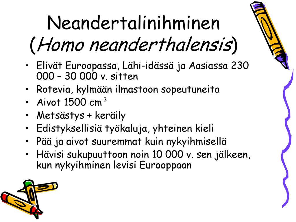 Neandertalinihminen (Homo neanderthalensis)