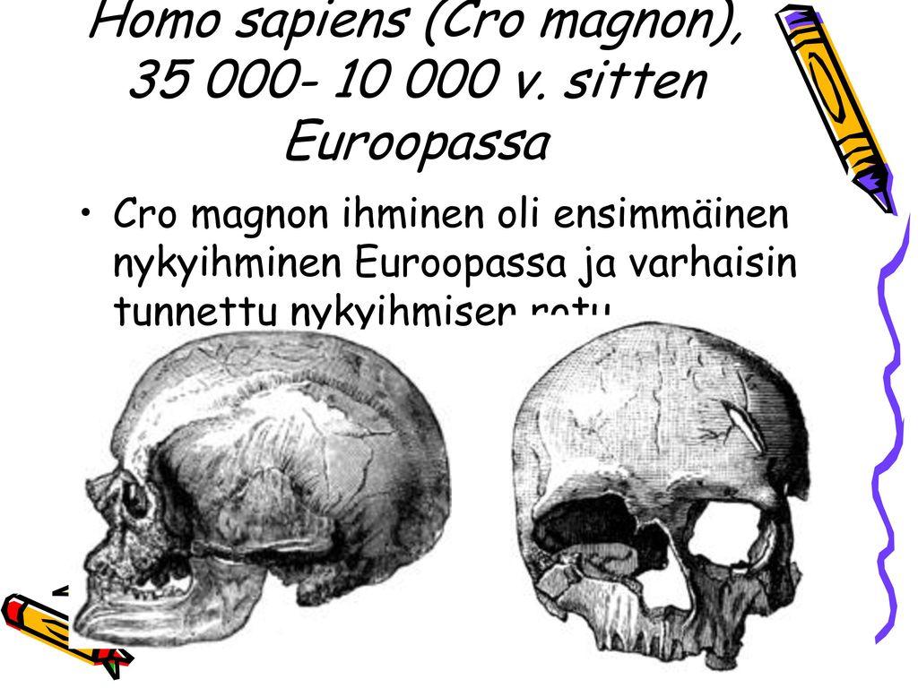 Homo sapiens (Cro magnon), 35 000- 10 000 v. sitten Euroopassa