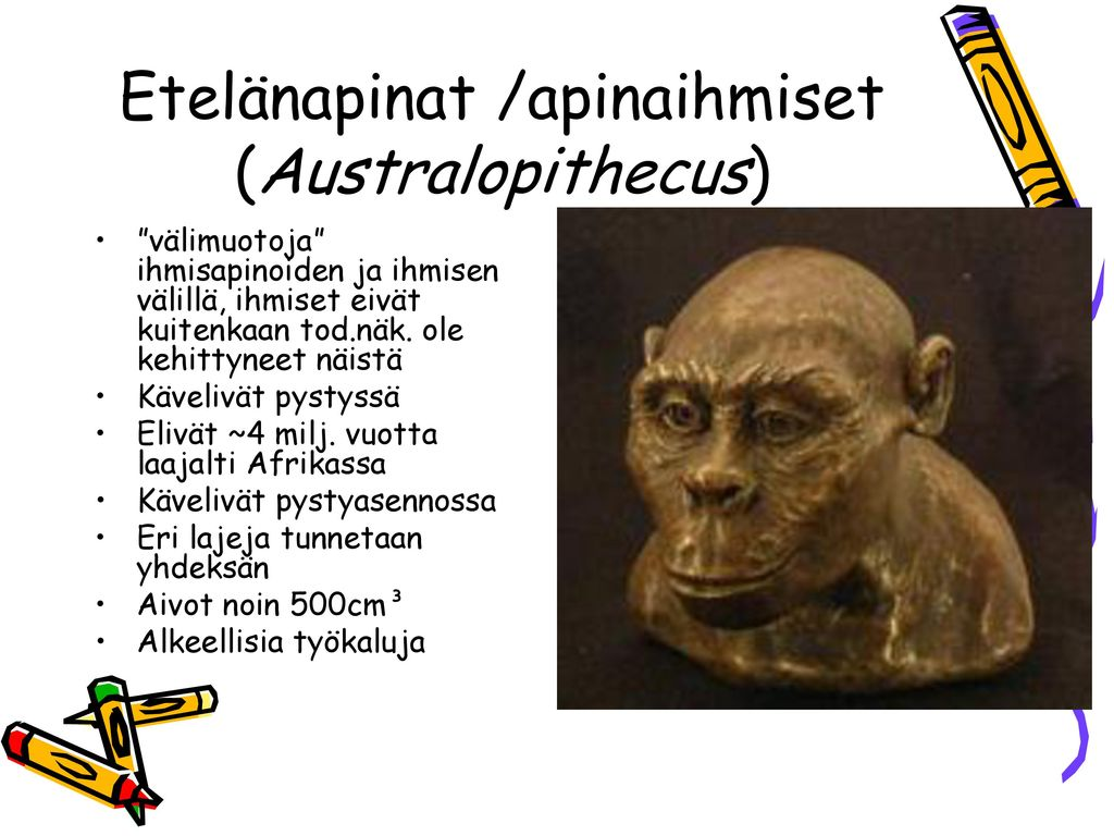Etelänapinat /apinaihmiset (Australopithecus)