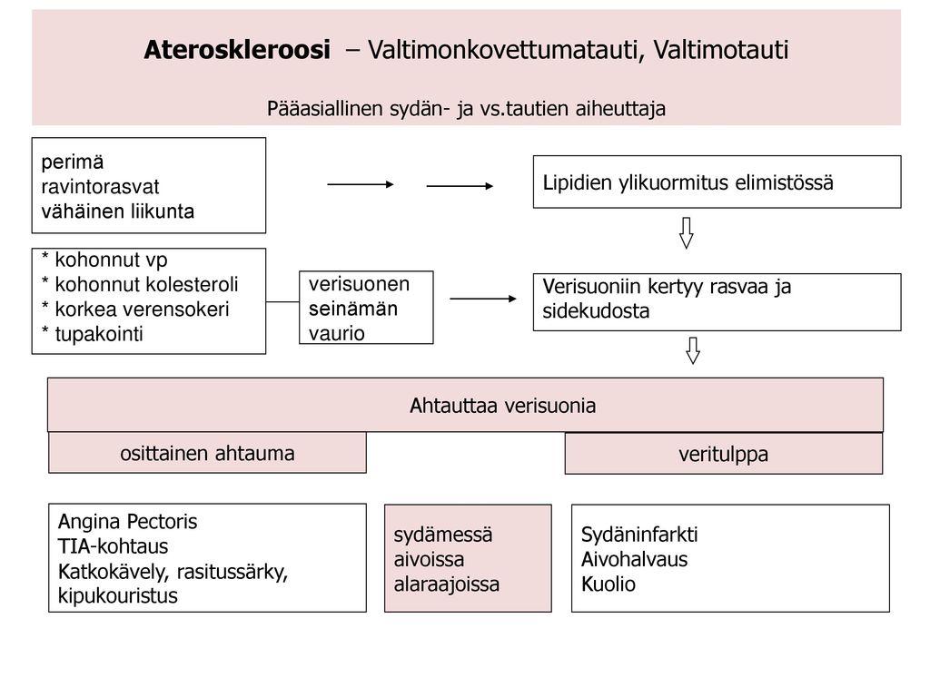 Ateroskleroosi – Valtimonkovettumatauti, Valtimotauti