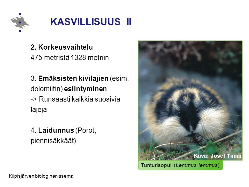 KASVILLISUUS II
