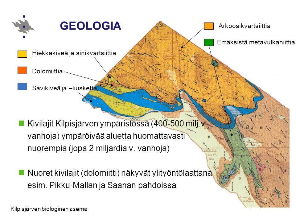GEOLOGIA Arkoosikvartsiittia. Emäksistä metavulkaniittia. Hiekkakiveä ja sinikvartsiittia. Dolomiittia.