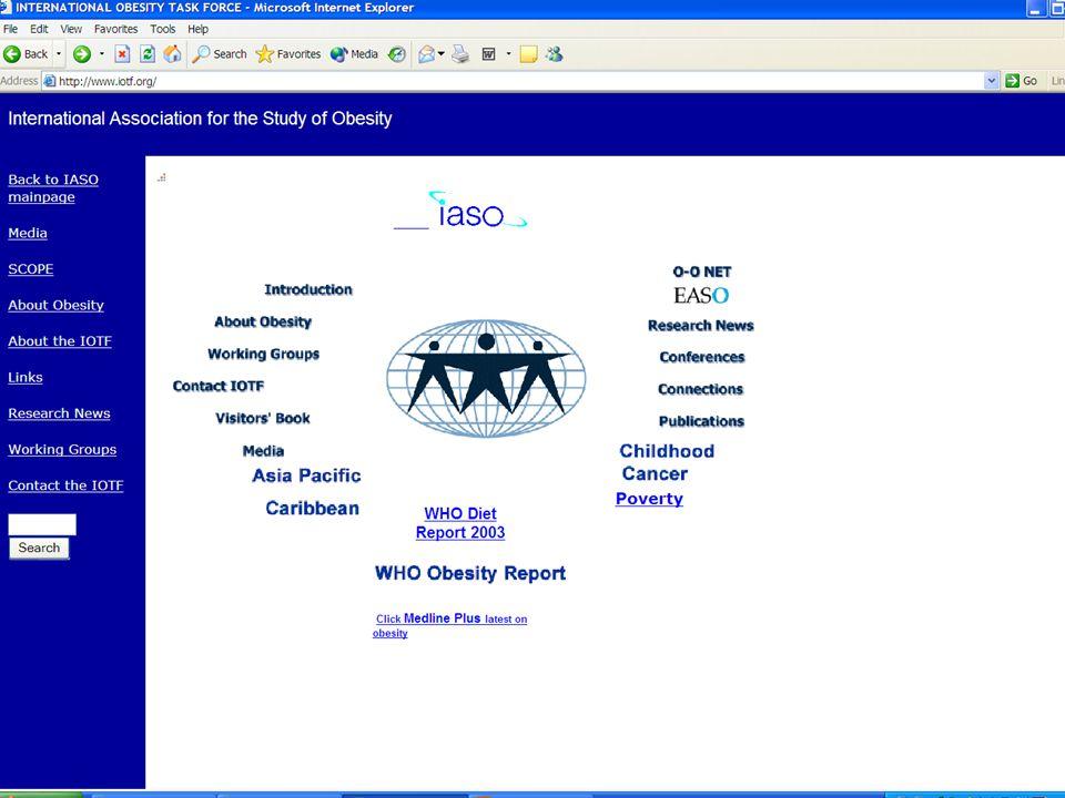 MSalo 2004