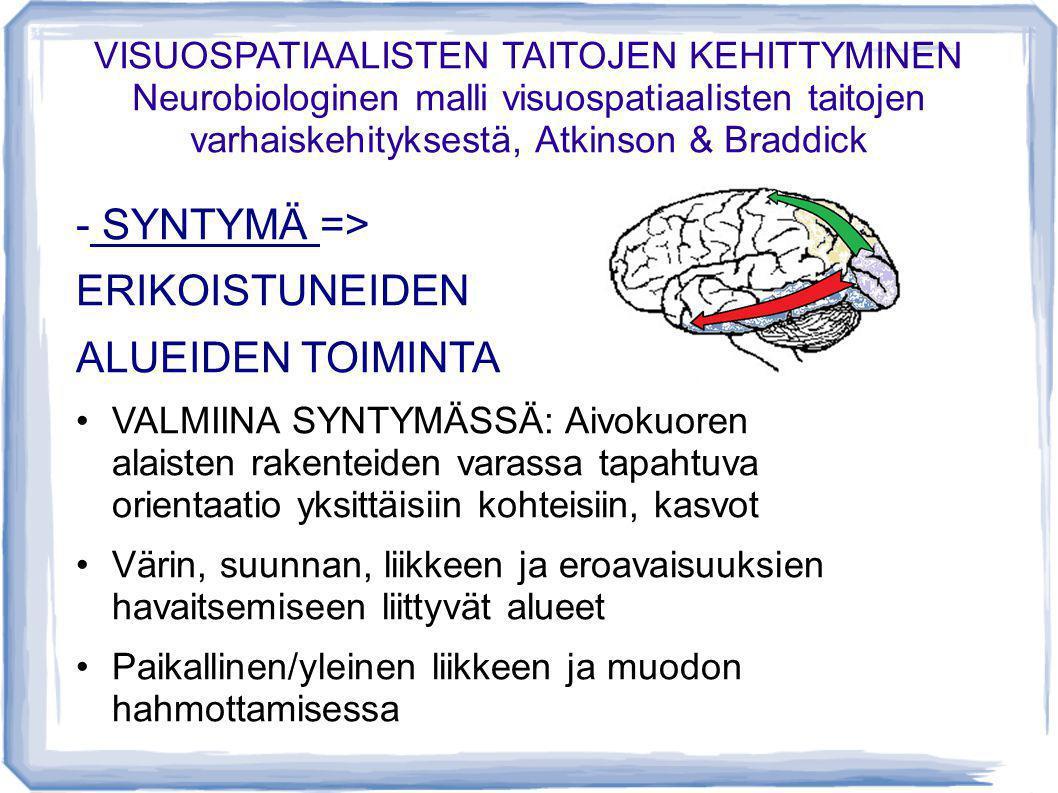 - SYNTYMÄ => ERIKOISTUNEIDEN ALUEIDEN TOIMINTA