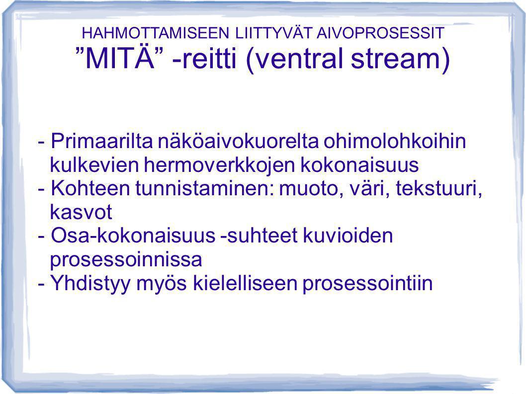 HAHMOTTAMISEEN LIITTYVÄT AIVOPROSESSIT MITÄ -reitti (ventral stream)