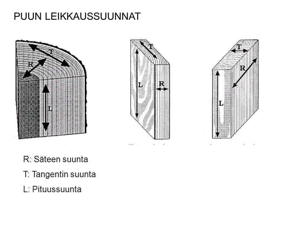 PUUN LEIKKAUSSUUNNAT R: Säteen suunta T: Tangentin suunta