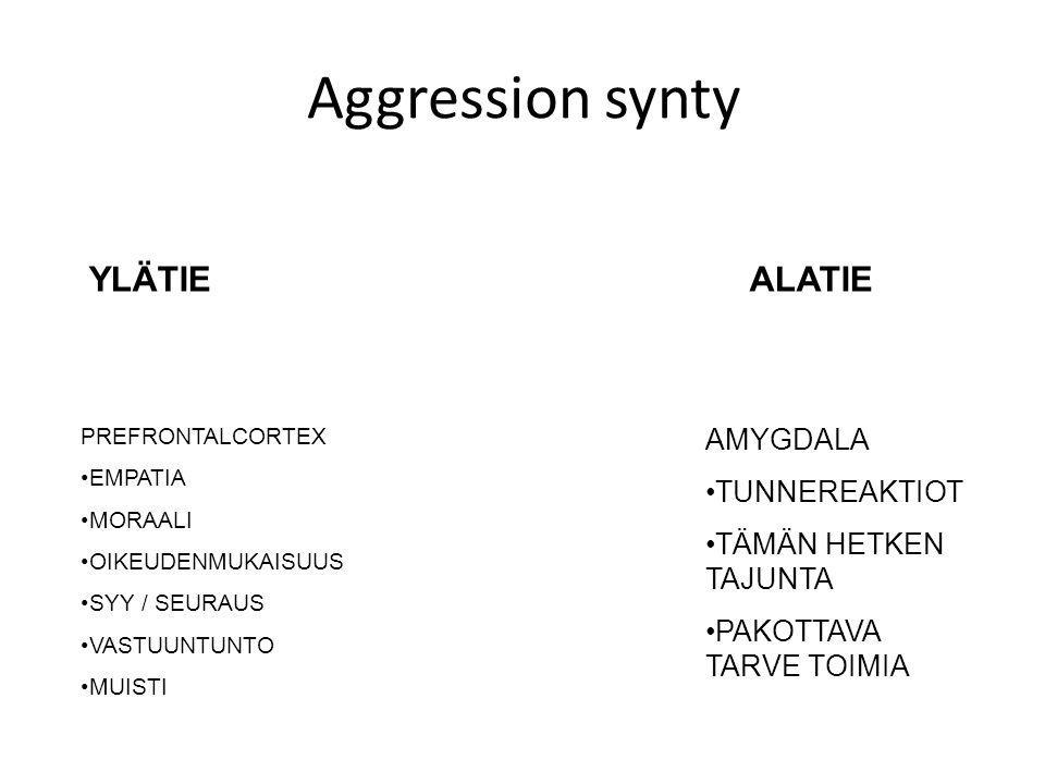 Aggression synty YLÄTIE ALATIE AMYGDALA TUNNEREAKTIOT