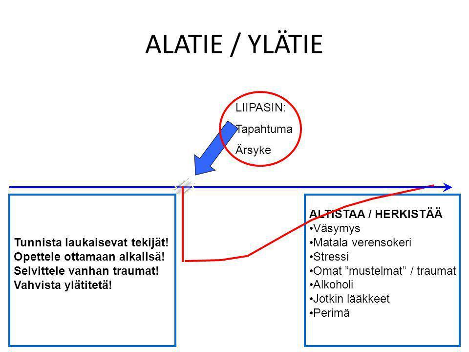 ALATIE / YLÄTIE LIIPASIN: Tapahtuma Ärsyke
