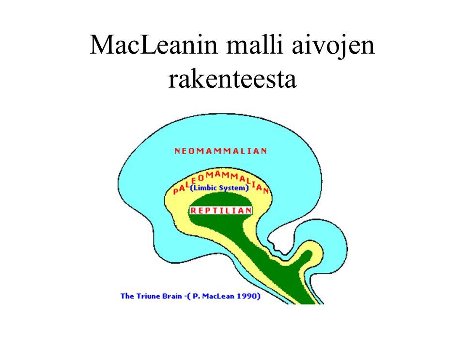 MacLeanin malli aivojen rakenteesta