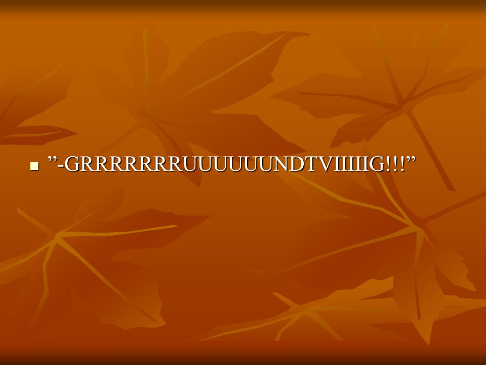-GRRRRRRRUUUUUUNDTVIIIIIG!!!