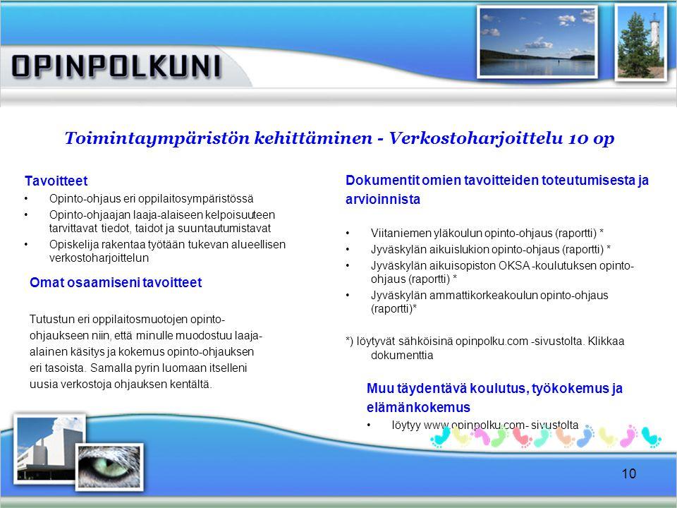 Toimintaympäristön kehittäminen - Verkostoharjoittelu 10 op