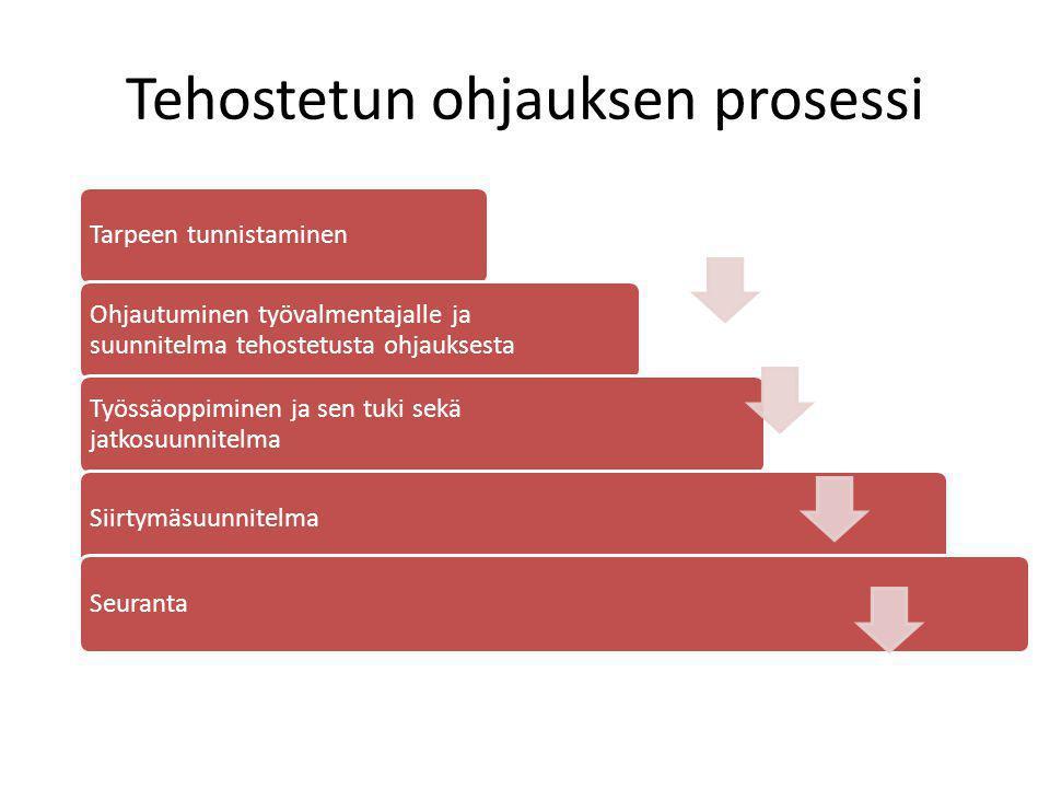 Tehostetun ohjauksen prosessi