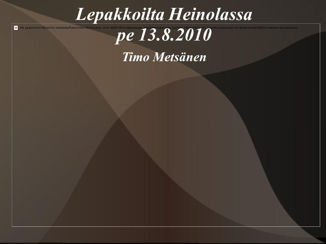 Lepakkoilta Heinolassa pe 13.8.2010 Timo Metsänen