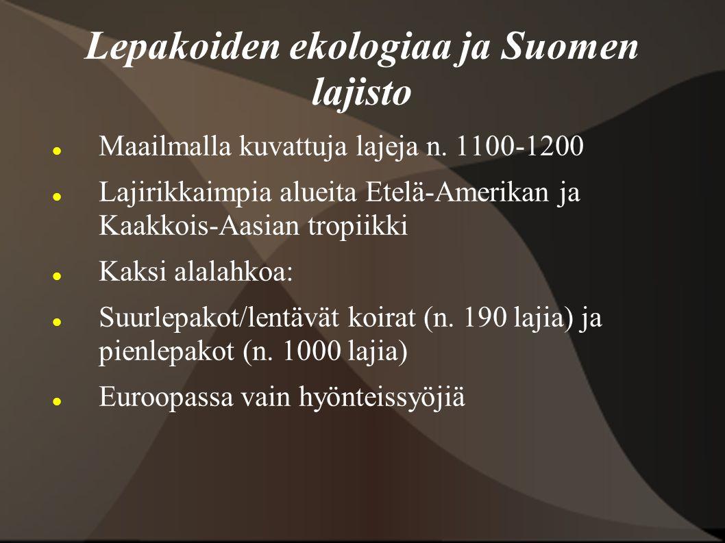 Lepakoiden ekologiaa ja Suomen lajisto