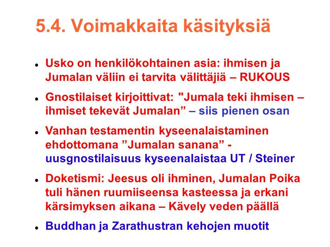 5.4. Voimakkaita käsityksiä