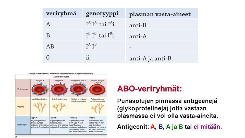 ABO-veriryhmät: Punasolujen pinnassa antigeenejä (glykoproteiineja) joita vastaan plasmassa ei voi olla vasta-aineita.