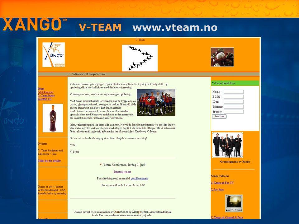 V-TEAM www.vteam.no 17