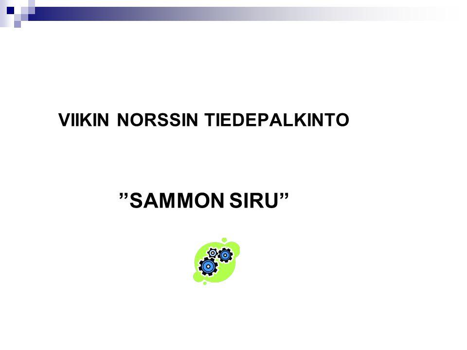 VIIKIN NORSSIN TIEDEPALKINTO