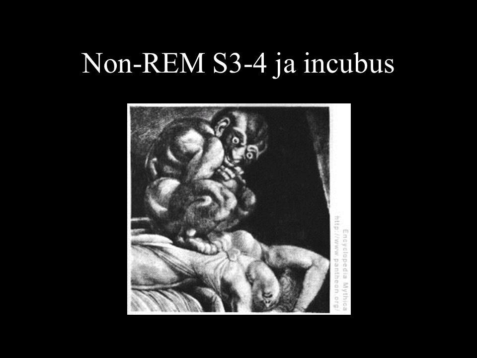 Non-REM S3-4 ja incubus
