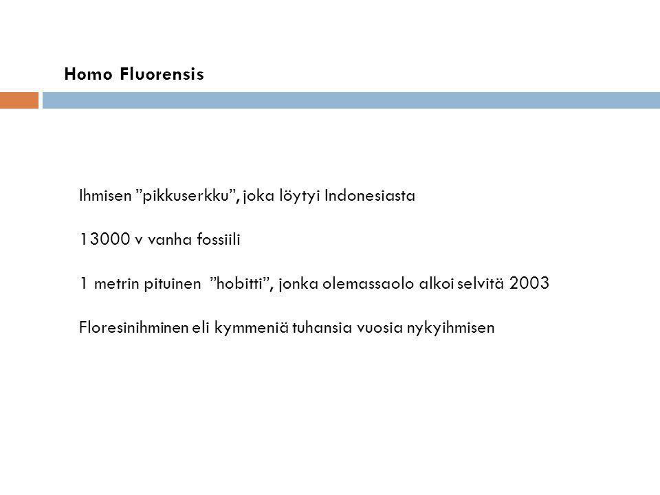 Homo Fluorensis Ihmisen pikkuserkku , joka löytyi Indonesiasta