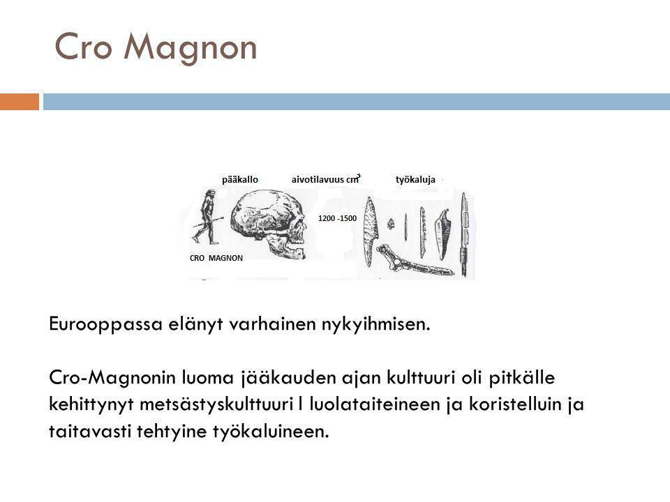 Cro Magnon Eurooppassa elänyt varhainen nykyihmisen.