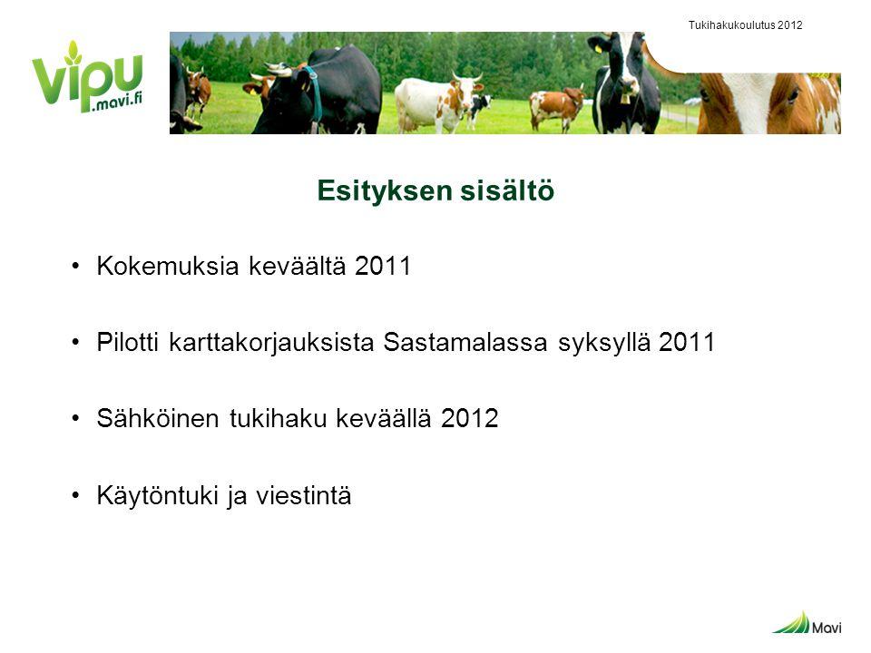 Esityksen sisältö Kokemuksia keväältä 2011