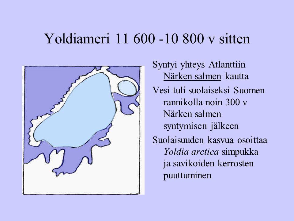 Yoldiameri 11 600 -10 800 v sitten Syntyi yhteys Atlanttiin Närken salmen kautta.
