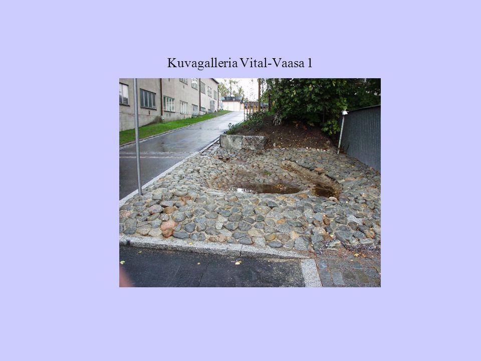 Kuvagalleria Vital-Vaasa 1