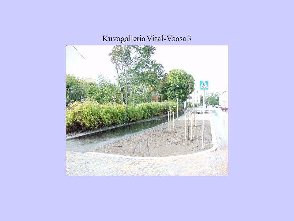 Kuvagalleria Vital-Vaasa 3