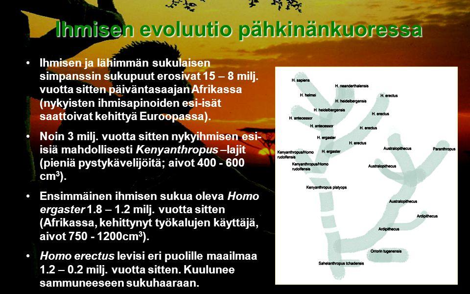 Ihmisen evoluutio pähkinänkuoressa
