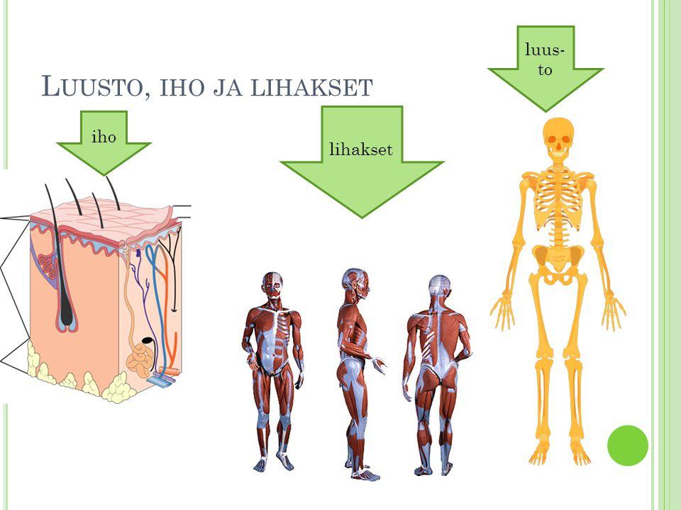 Luusto, iho ja lihakset luus- to lihakset iho