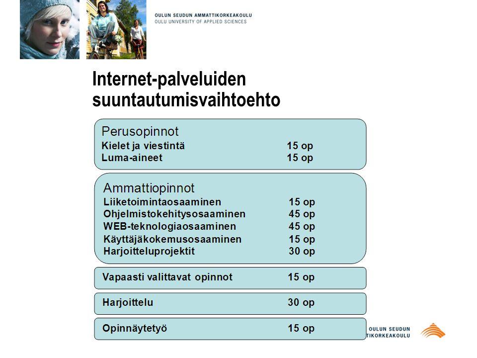 Internet-palveluiden suuntautumisvaihtoehto